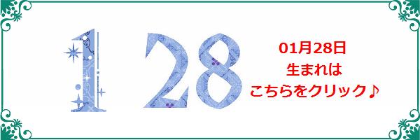 28日生まれ